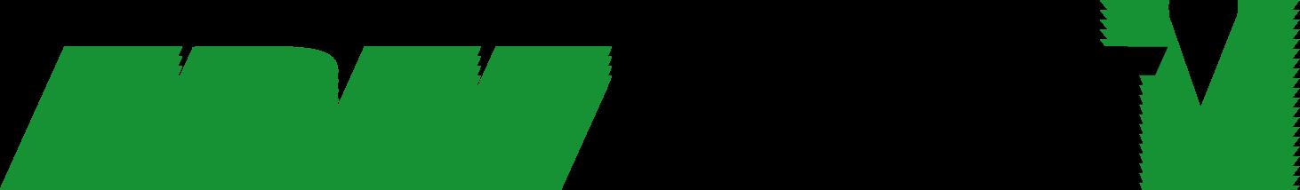 Freeride 5 Logo